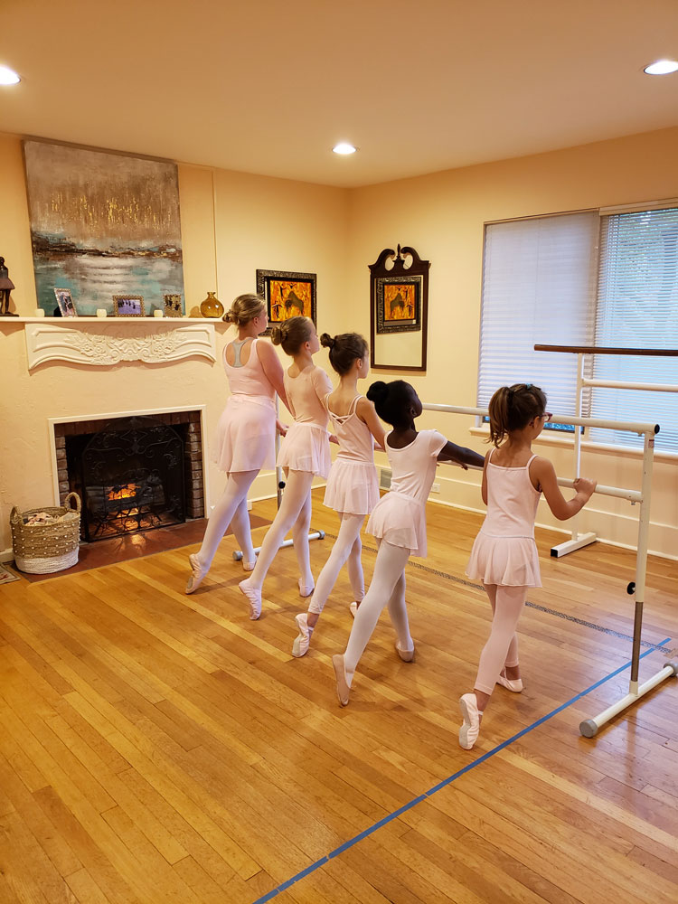 Intro to Ballet 1 barre